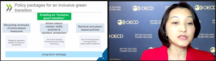 A Green Transition Ensuring a Fair and Equitable Recovery